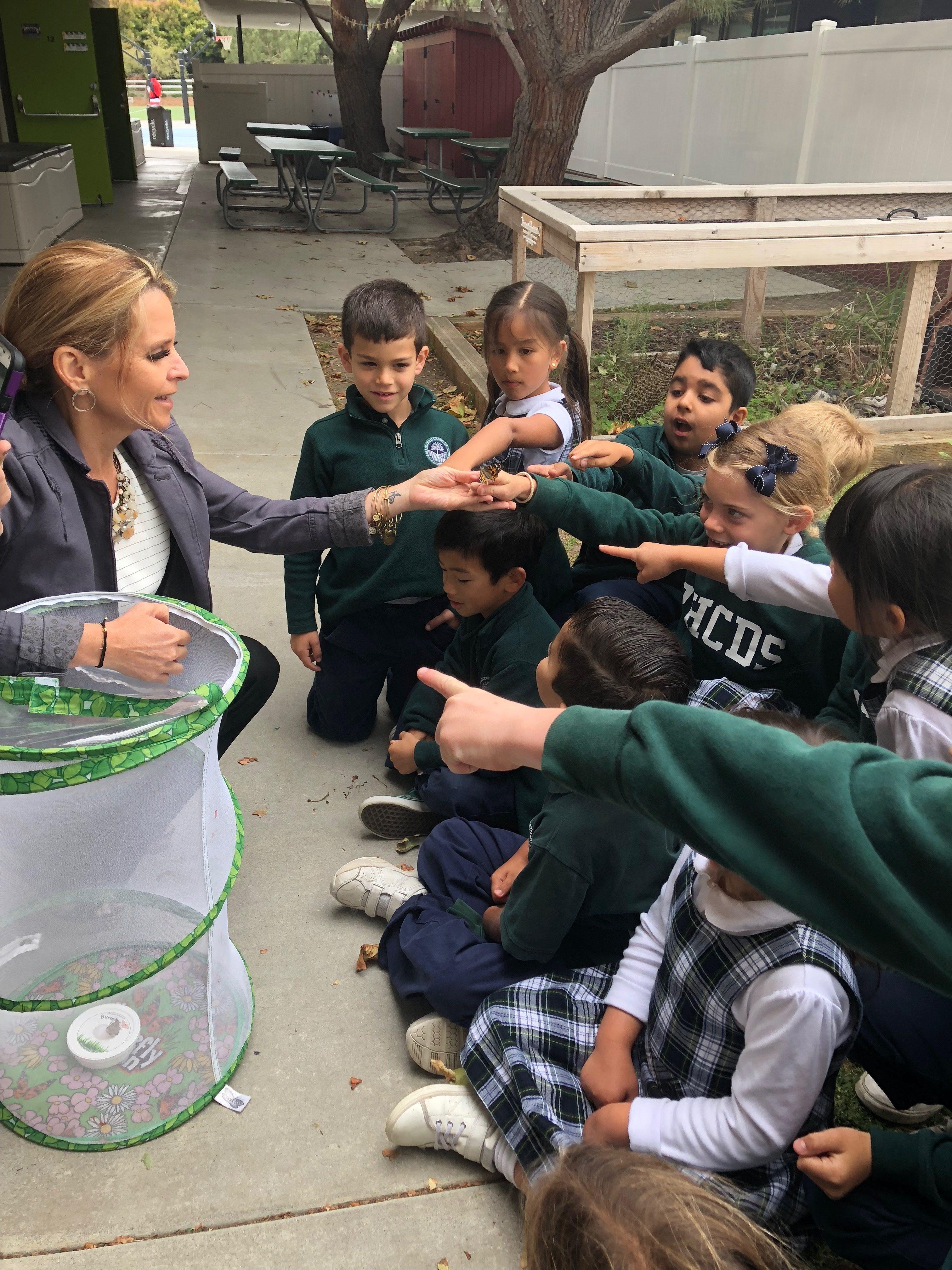Kindergarten students release butterflies!